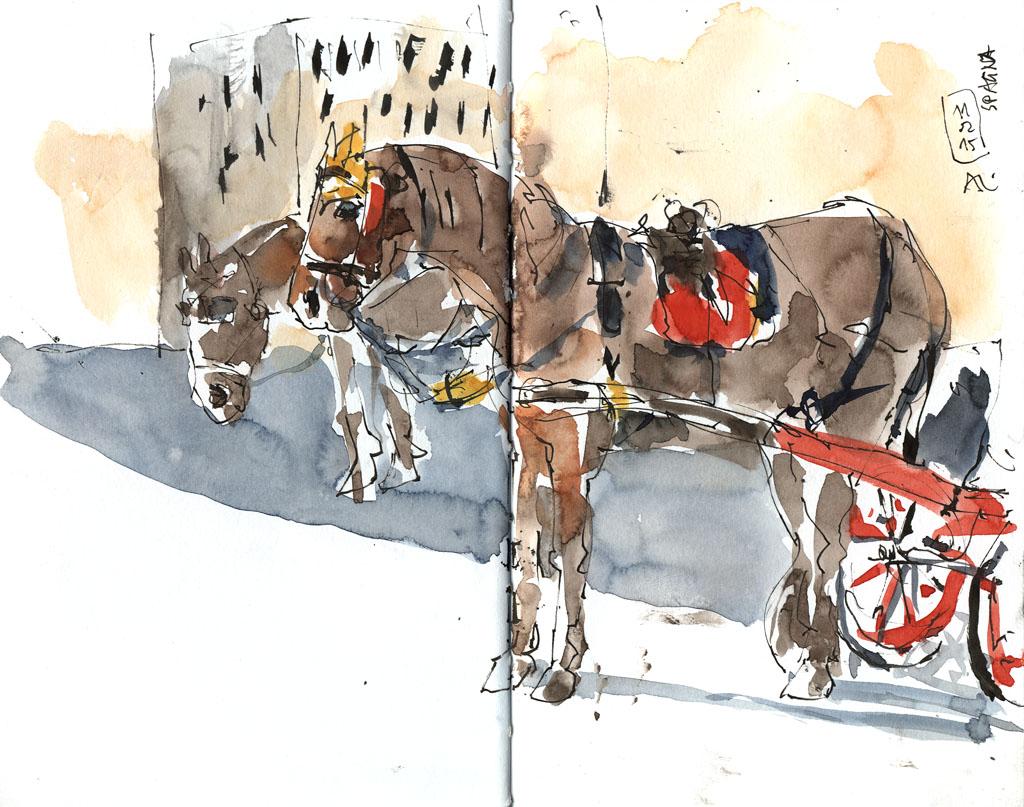 15-02-11_Pferde-