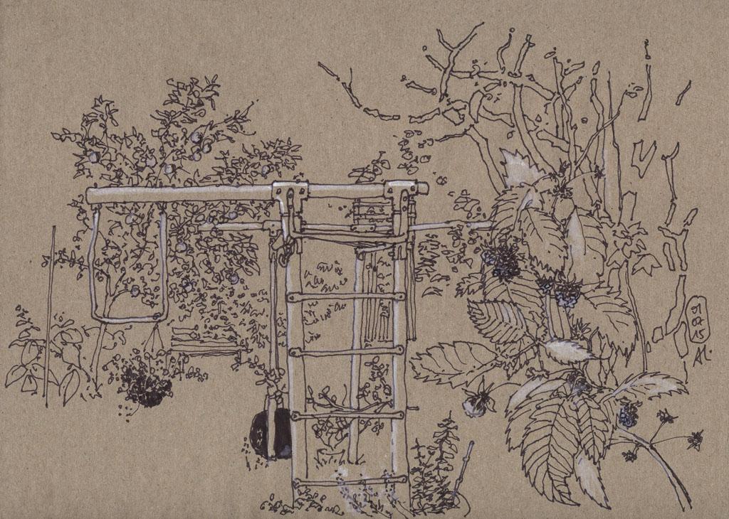 15-07-01_Garten-