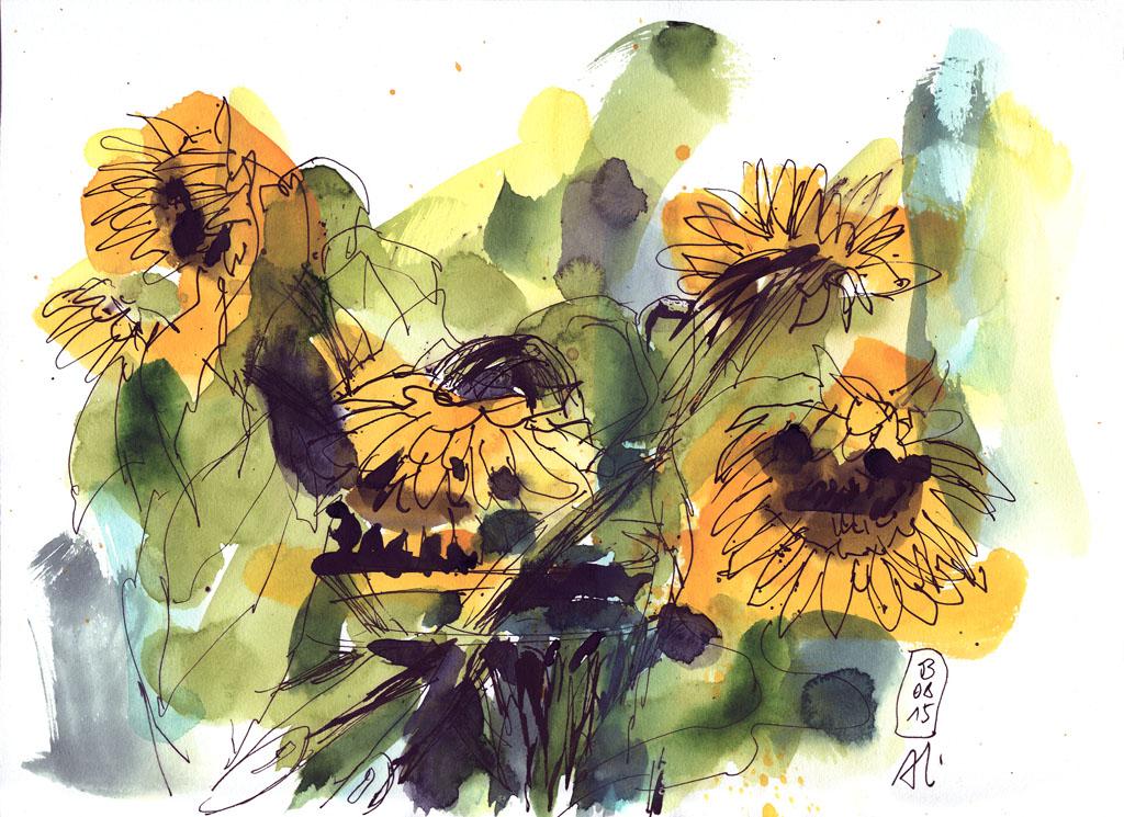 15-08-03_Sonnenblumen 01_fk-
