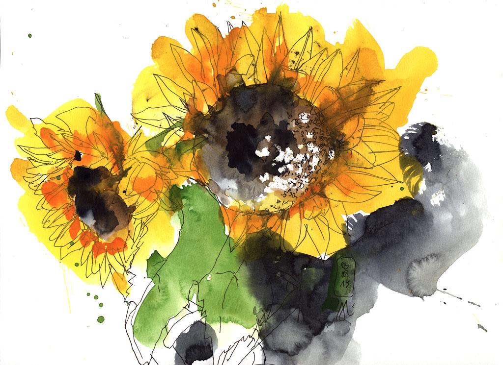 15-08-03_Sonnenblumen 03_fk-