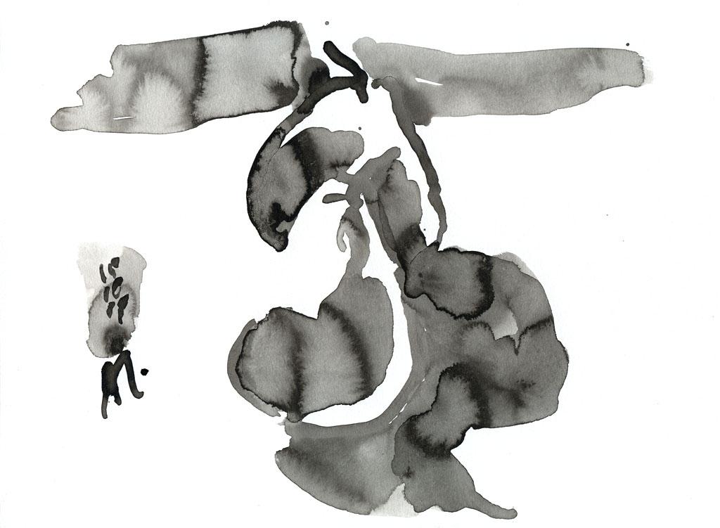 15-10-15_zwei Birnen 09-