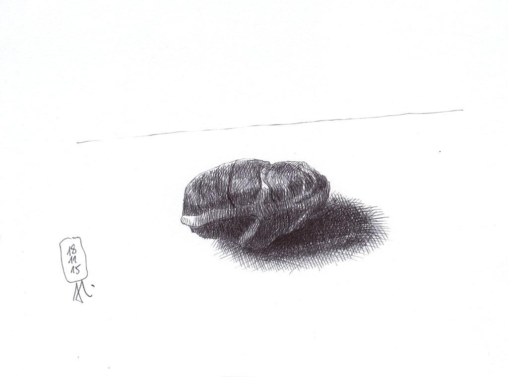 15-11-18_ein Stein