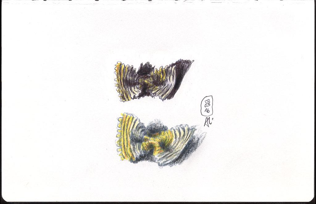 16-03-02_Farfalle-