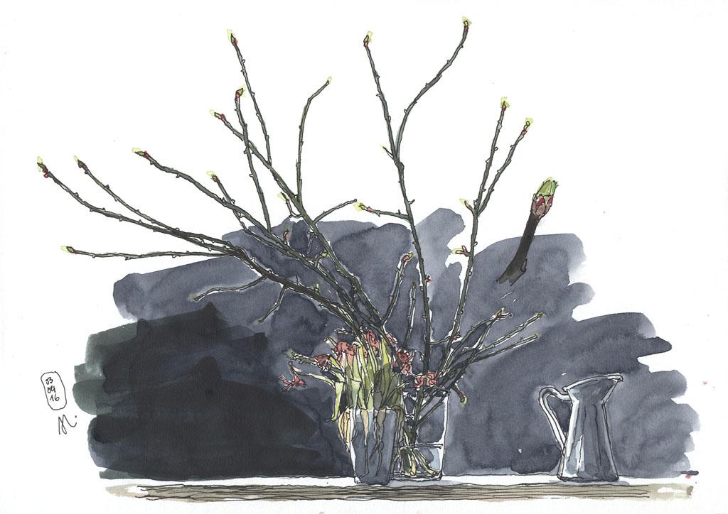 16-04-03_Apfelzweige-